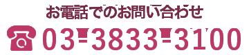 お電話でのお問い合わせは03-3833-3100